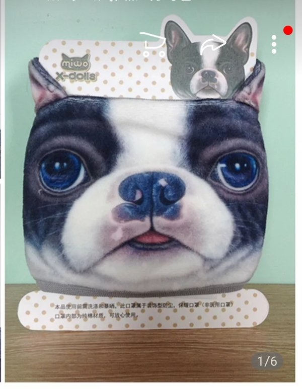 Frenchie dog Design Anti Dust Mask